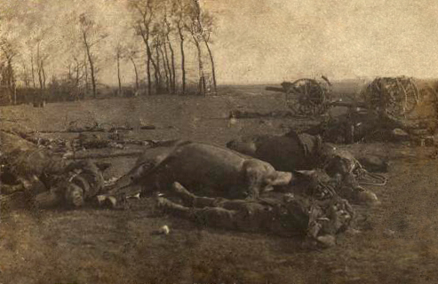 British Casualties at Le Cateaua